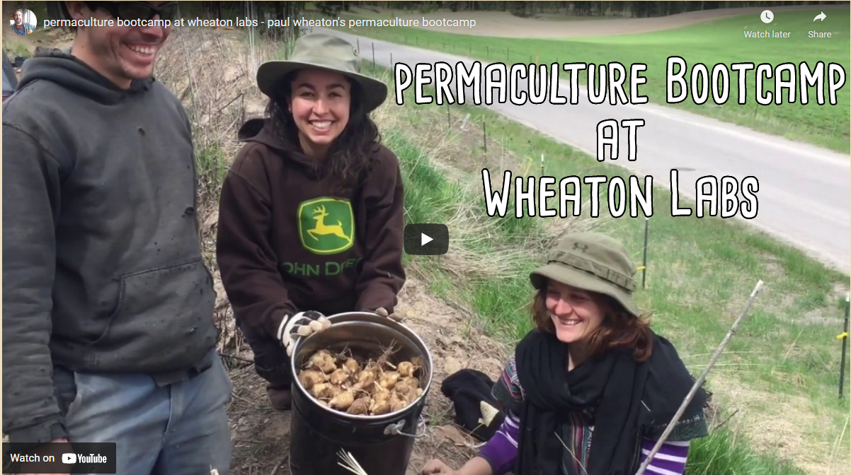permaculture bootcamp at wheaton labs